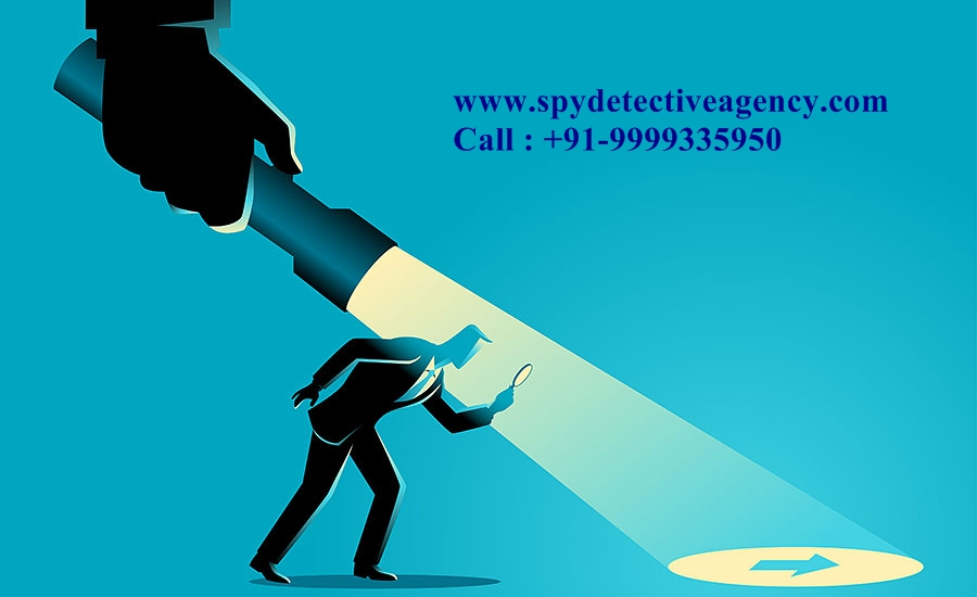 Detective agency for Corporate Investigations