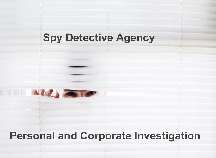 What makes SDA the Expert Private Detective Agency in Delhi