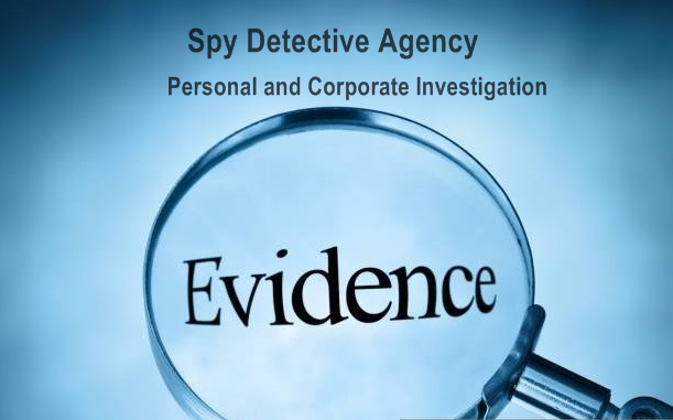 What type of investigation Spy Detective Agency can do